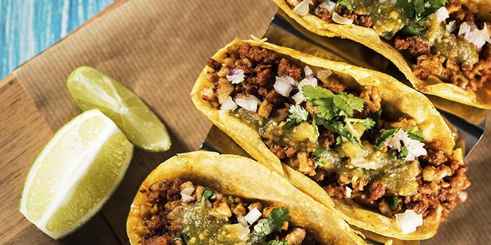 Tacoskjell